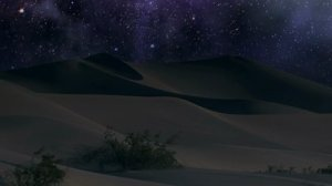 night desert