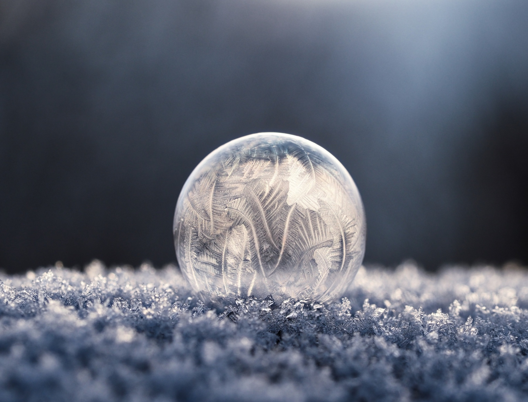 ice, Frost, winter, mystery