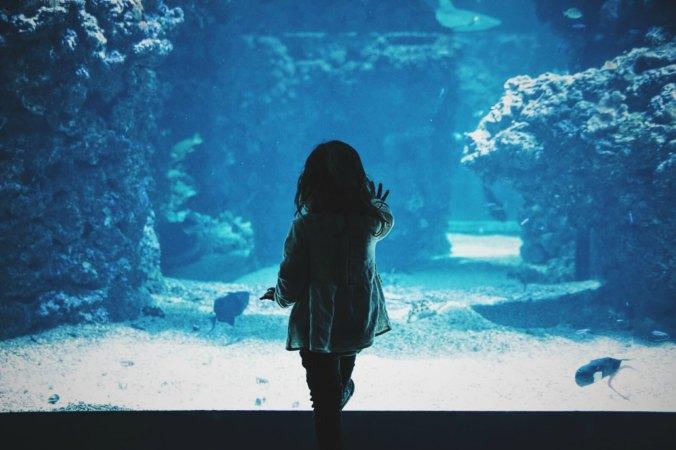 girl, aquarium