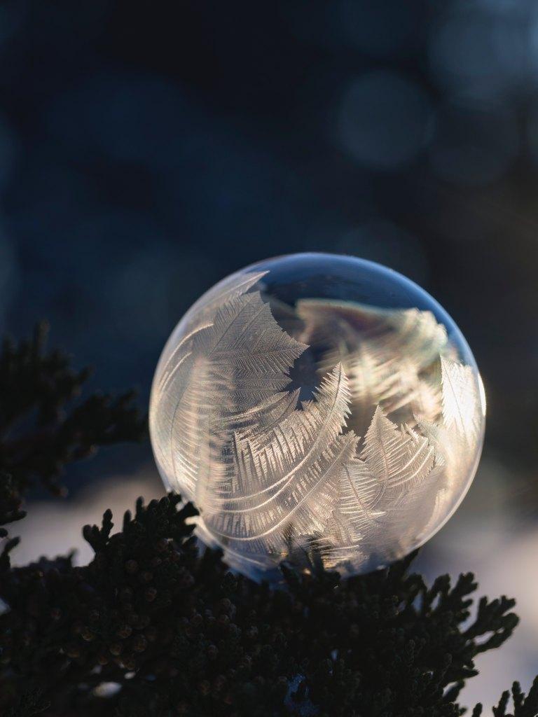 Frozen, ice, midwinter, angel wings, angel