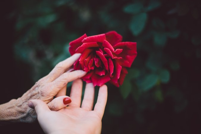 Rose, hands, Christian, help, Elderly
