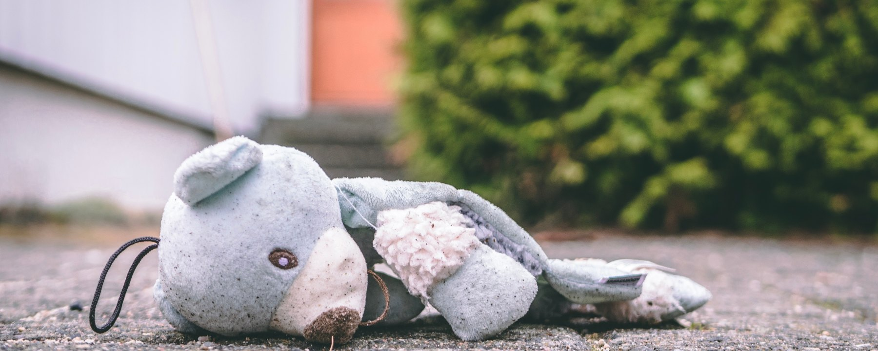 Teddy bear, lost childhood, children, sadness, sexual abuse crisis