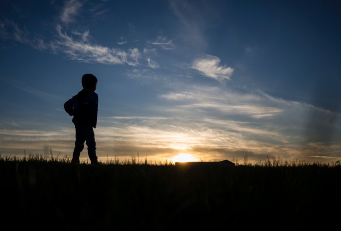Child, boy, Nature, sunset