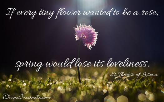 Saint Therese of Lisieux, Little Flower, tiny flower, rose, spring, loveliness