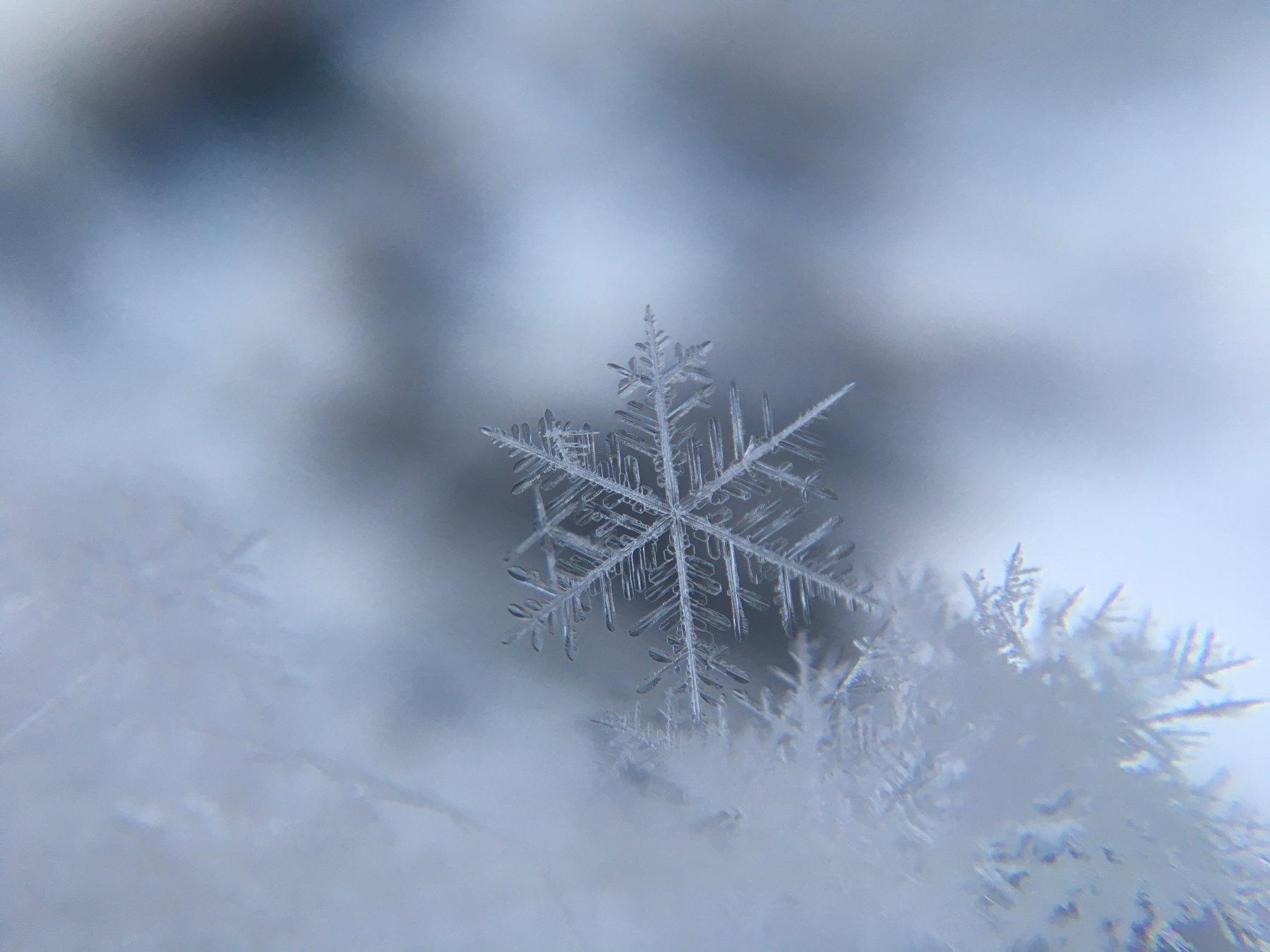 Snow, winter, storm, snowflake