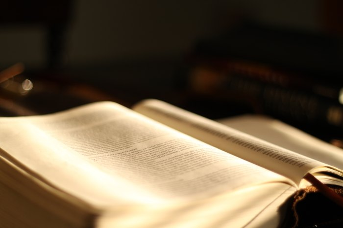 Bible, word of God, love story