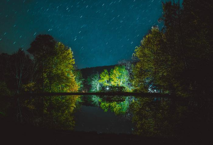 dark night, reflection, green place, shelter