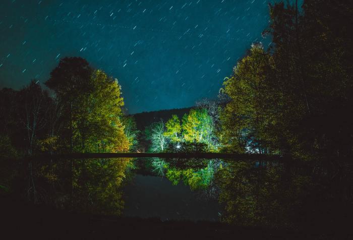 dark night, reflection, green place, shelter